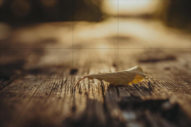 Goldener Schnitt: Ich erkläre ich Dir in einfachen Worten, wie Deine Fotos damit viel interessanter und spektakulärer werden.